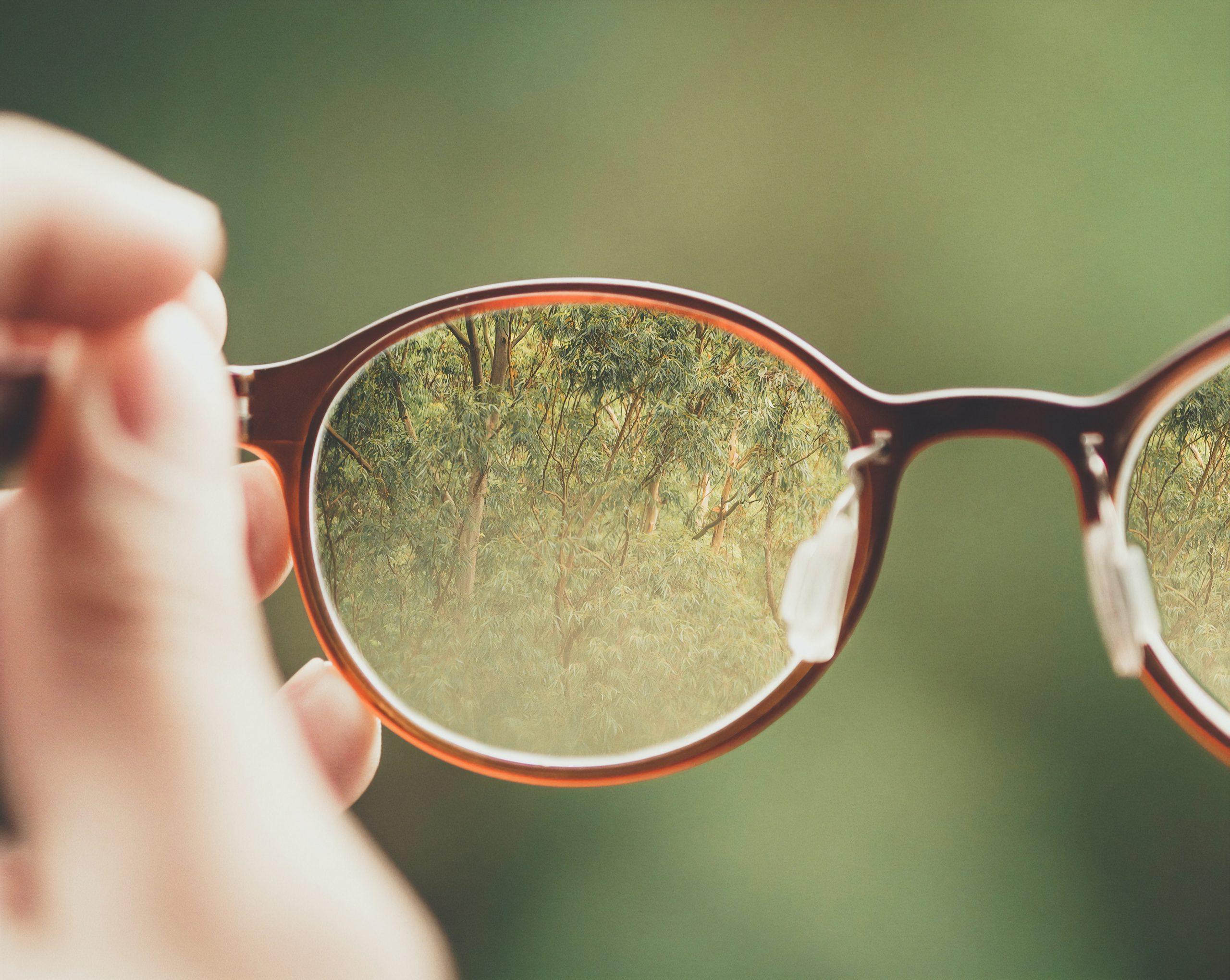Referenz_Augenoptik